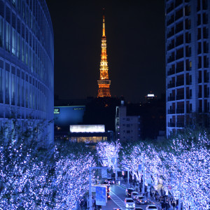 Top Illuminations in Japan