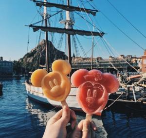 Tokyo Disney Sea and Disneyland