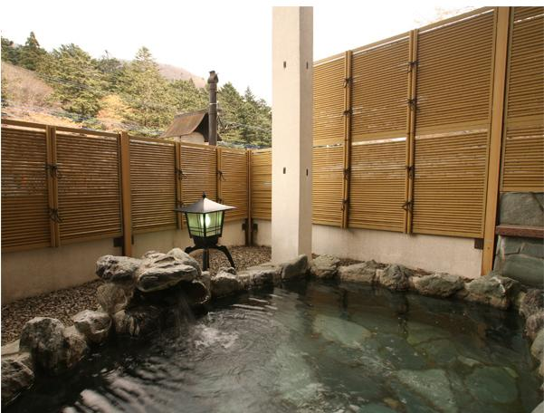 Top 5 Affordable Ryokans Near Tokyo (Part 3)