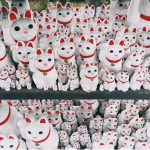 Instagram Worthy Photo Spots in Tokyo: Gotokuji Temple