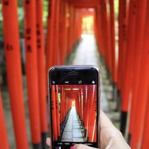 Instagram Worthy Photo Spots in Tokyo: Nezu Shrine