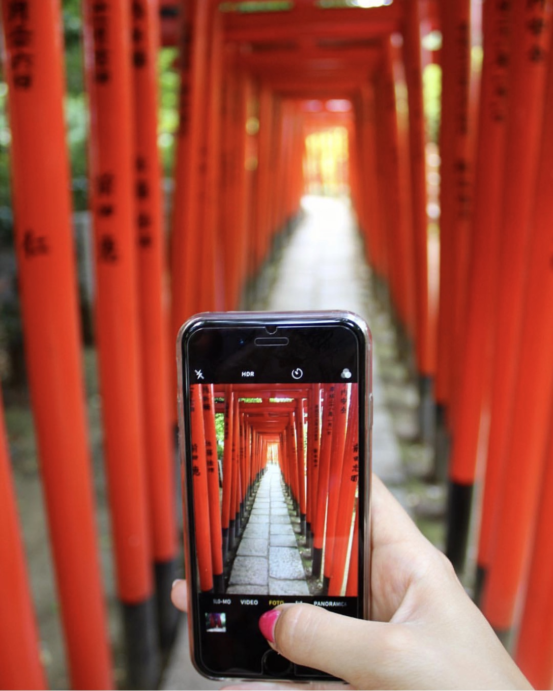 Instagram Worthy Photo Spots in Tokyo: Nezu Shrine
